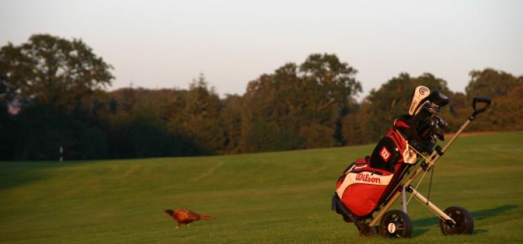 Akcesoria niezbędne na polu golfowym