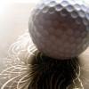 20 zaskakujących ciekawostek golfowych