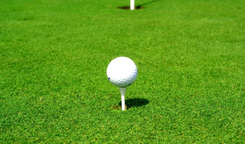 Naukowe dowody na azjatyckie korzenie gry w golfa
